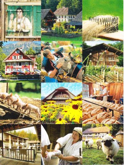 バレンベルグ野外博物館ースイス各地の暮らしを見よう