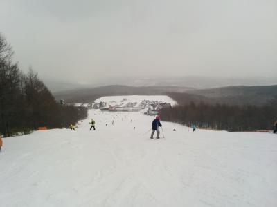 雪景色 羽鳥湖 スキー