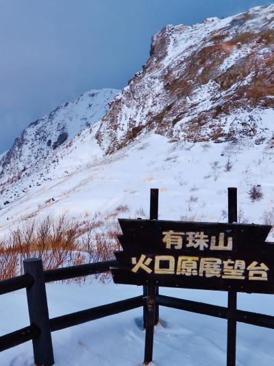 有珠山ロープウェイ 火口原と洞爺湖の展望台 ☆雪の坂道を10分登って