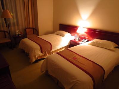 一時帰国02★2日連続上海…国際線乗り継ぎで上海へ!空港近くのホテルに1泊