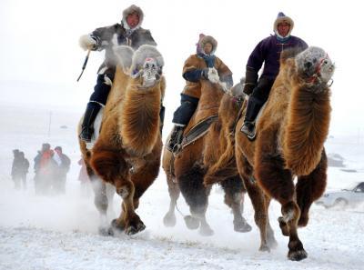 02/27出発   冬のモンゴルイベント2018年
