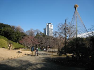 駅からハイキング 御茶ノ水界隈 新春の神社めぐり