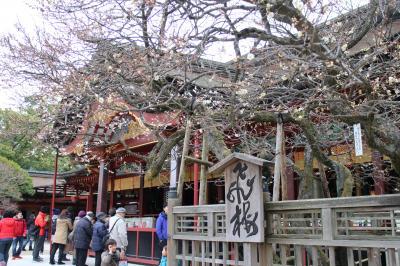 初めての九州旅  1日目 福岡から始まります。。。