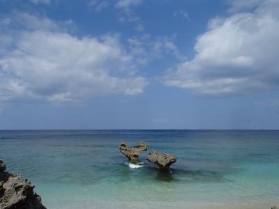 沖縄本島にて、白蛇に会いに行ってきました♪古宇利島・美ら海水族館・おきなわワールドへの旅★