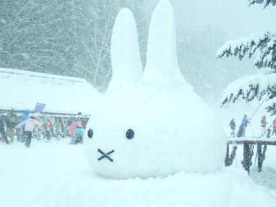 《2015年1月》スキーヤー専用!ミッフィーちゃんのかたしな高原スキー場 日帰りスキー
