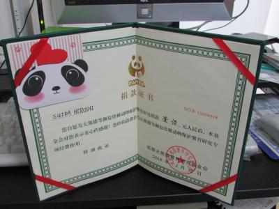 四川省パンダ探しの旅(5日目 成都大熊猫繁育研究基地 艾莉と熊猫基金、文殊院)