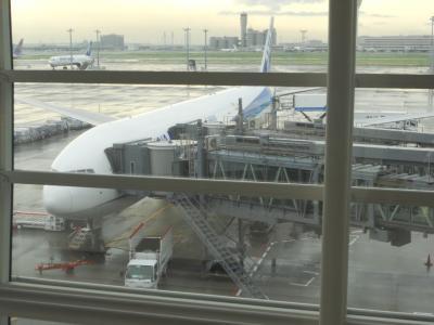 2015年 ドイツ・ロマンティック街道を旅行(1日目 羽田空港→フランクフルト空港→ヴュルツブルク移動)