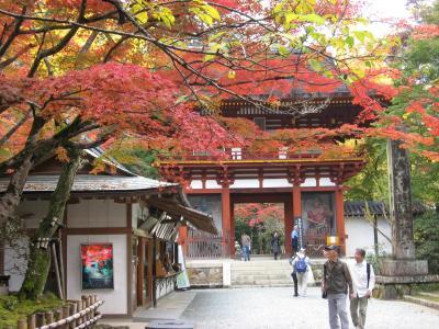 近畿の同窓会から京都・奈良・兵庫②
