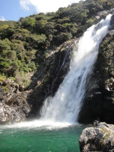ひとり旅:屋久島4 現地バスツアーへ参加