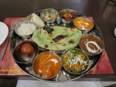 ナマステー!インド・ネパールの旅2015⑩(インド・アグラ~ジャイプール:1月29日)