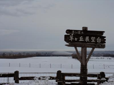 2012年11月 初めての北海道遠征 その3 最終日は羊ヶ丘展望台と支笏湖へ