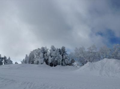 2015 行き当たりばったりの 北志賀高原竜王 日帰りスキー