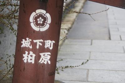 関西散歩記~2015 兵庫・丹波市編~