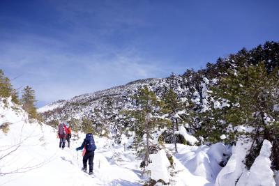 青い空と白い雪のコントラスト!初の雪山@北八ヶ岳