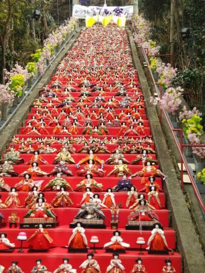 千葉県…勝浦の雛人形見てきました!
