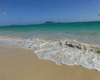 みんなでハワイ 2013 第2日目