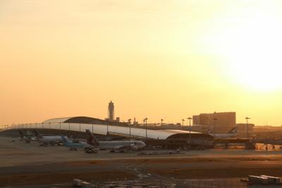 関西国際空港展望ホールSkyViewで夜景を見る!