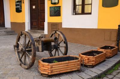 ブラチスラヴァ旧市街で博物館めぐり+デヴィーン城 (ハンガリー&スロヴァキア旅行4)