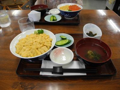 神威岬にウニを求め在りし日の小樽朝里川温泉宏楽園に泊まる旅