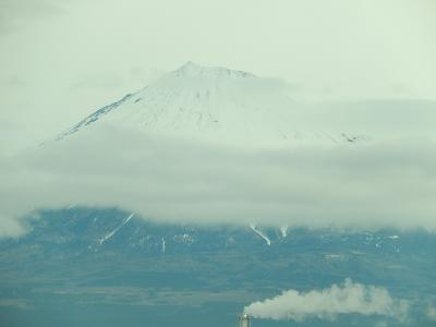久しぶりに新幹線より見られた富士山
