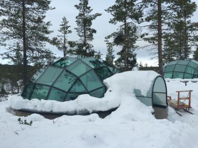 フィンランド(ラップランド)2日目:KAKSLAUTTANEN(ガラスイグルー)
