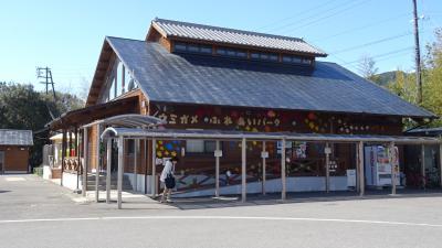 デルタのマイレージで行く紀伊半島一周(12) 道の駅 紀宝町ウミガメ公園