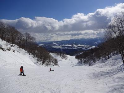 ダイナランド(岐阜県) 2015.3.3~4