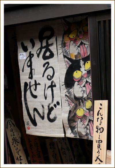 Solitary Journey [1536] 元興寺の旧境内を中心とした地域が「ならまち」と呼ばれています。<古い町並み・ならまち通り>奈良県奈良市