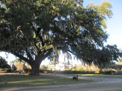 2013/12 Charleston-Savannah 【1/3】