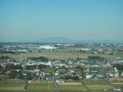 埼玉県民の日記念無料スポットを回る