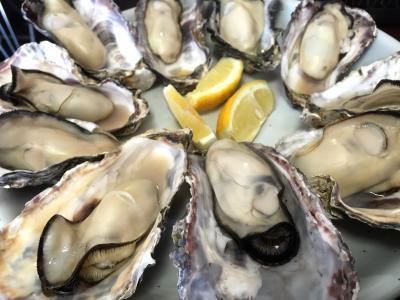 2015 3月 牡蠣を食べに! 春の赤穂・姫路 1DAYトリップ