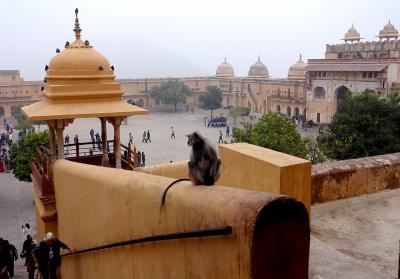 インド1周の旅 (11) ジャイプル