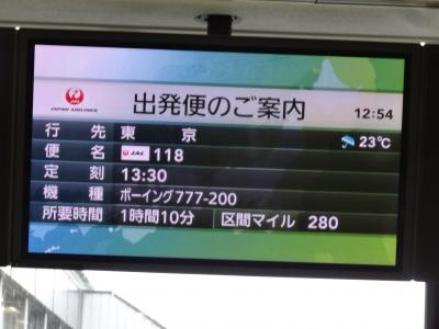 この日は伊丹空港の17番スポットから出発です。