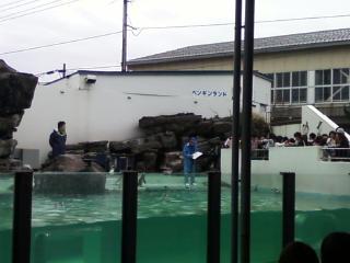 上越市立水族博物館へ 週末別荘ライフ@信州野尻湖 2015 4月 3