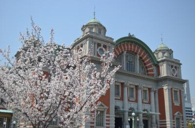 春の北浜 ~大阪市中央公会堂~