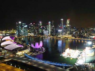 仕事で行くシドニー旅行記(シンガポール訪問〈ストップオーバー〉編) Vol.5