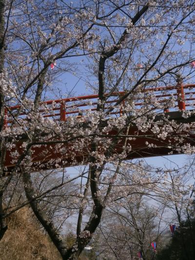 青春18春 ① 小見川城で花見