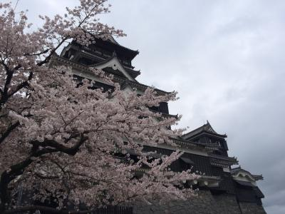 15年春休み 父+娘2人熊本旅行(出張同行)