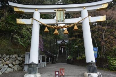 2015 長瀞の花を追いかけて~宝登山神社♪