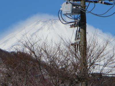 豪雪のため箱根に軟禁(笑) 1