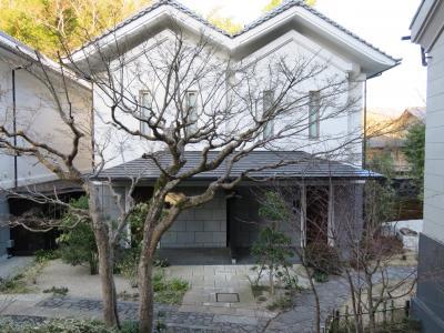 一泊二日で春の伊豆に行ってきました
