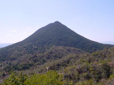 近江富士  三上山(432m) と 妙光寺山(267m) を周回しました