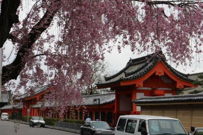 2日目  京都駅から三十三間堂を目指し。。。。⑥
