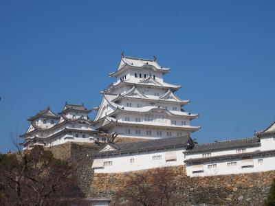 両親と3人で私の生まれた街へ☆京都に立ち寄り桜も☆姫路城グランドオープン初日