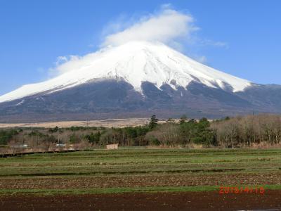 時々の富士山を求めて4日目/1 山中湖から花の都公園周辺を散歩