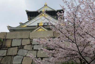 2015春、百名城巡り(3):4月3日(3):大阪、大阪城、城内展示品、花吹雪