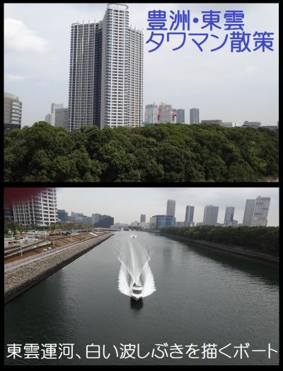 豊洲・東雲タワマン散策