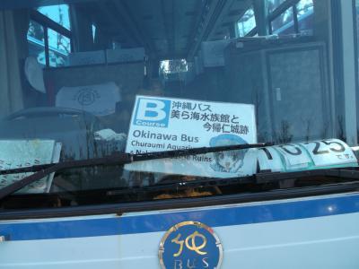 のんびり旅沖縄4日間④ 沖縄バスの定期観光Bコースで北部!