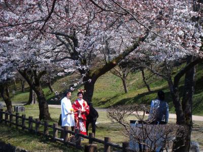 (祝・人吉球磨 日本遺産に認定)2015早春の九州路 人吉城址の桜と、昭和の香り漂う博物館?