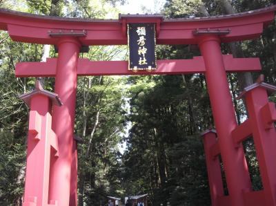 弥彦神社から寺泊までドライブしてきました